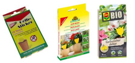 Gelbsticker gegen Trauermücken und Erdfliegen